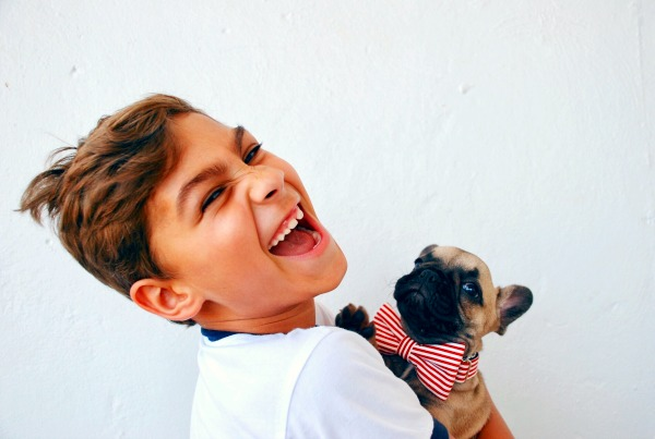 Understanding Pet Adoption boy holding a pug puppy wearing a bow tie