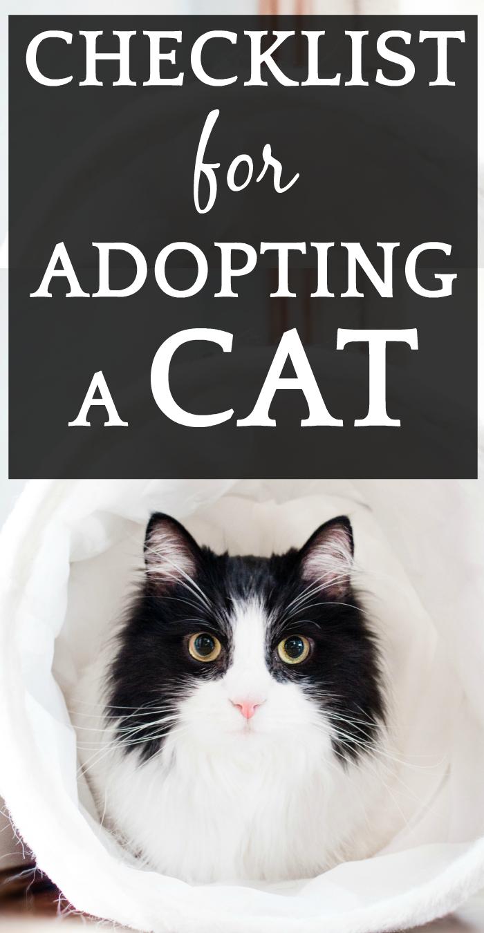 Adopt a Cat Checklist